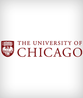 The University of Chicago sponsorizza una Fulbright Distinguished Chair in Studi Umanistici e Scienze Sociali