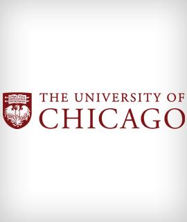 The University of Chicago sponsorizza una Fulbright Distinguished Chair in Studi Umanistici e Scienze Sociali